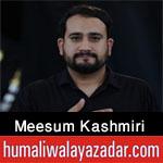 https://aliwalayazadar.blogspot.com/2020/08/meesum-kashmiri-nohay-2021.html