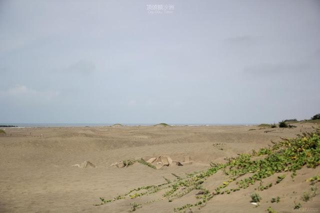 頂頭額沙洲