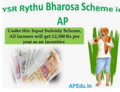 The farmer did not get the Rythu bharosa  money, and the details of how many installments are in full detail.