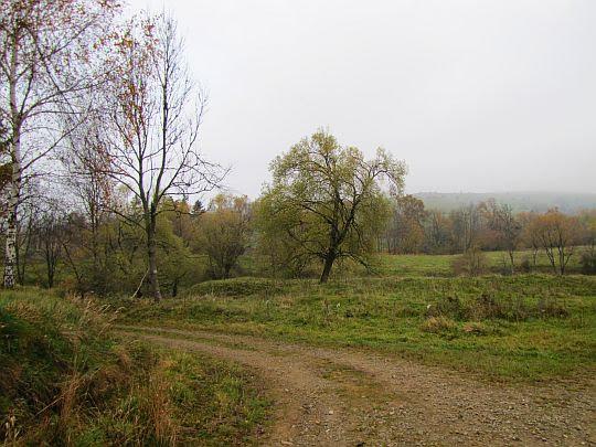 Zejście do doliny Iwelki.