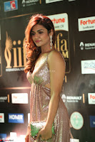 Telugu Actress Aarthi in Deep Neck Backless Golden Gown at IIFA Utsavam Awards 2017 Exclusive 07.JPG