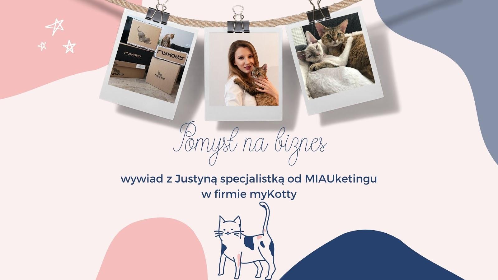 1 drapaki ekologiczne dla kota poduszki polska marka gdzie kupić zabawki gadżety dla kota dla kociarzy poduszki naturalne wypełnienie dla kotów butelki miski mykotty cena opinia