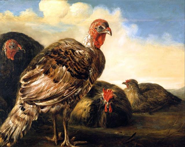 Альберт Кёйп - Домашняя птица