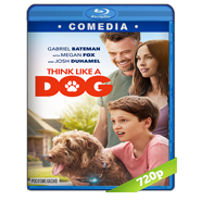 Think Like a Dog (2020) BRRip 720p  Audio Dual Latino-Ingles