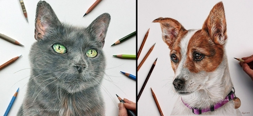 00-Angie-A-Pet-and-Wildlife-Pencil-Drawing-Artist-www-designstack-co