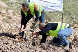Desert country Jordan aims for green with 10-million tree in 10 years