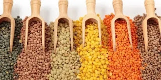 Pulses Products