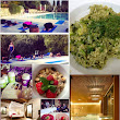 REVIEW OF OUR TUSCAN DETOX & PILATES RETREAT 2014