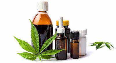 Marihuana CBD Cannabis legal