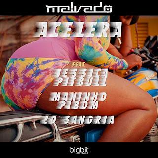 DJ Malvado feat. Jessica Pitbull, Mininho Pibom & Ed Sangria ( 2019 ) [DOWNLOAD]