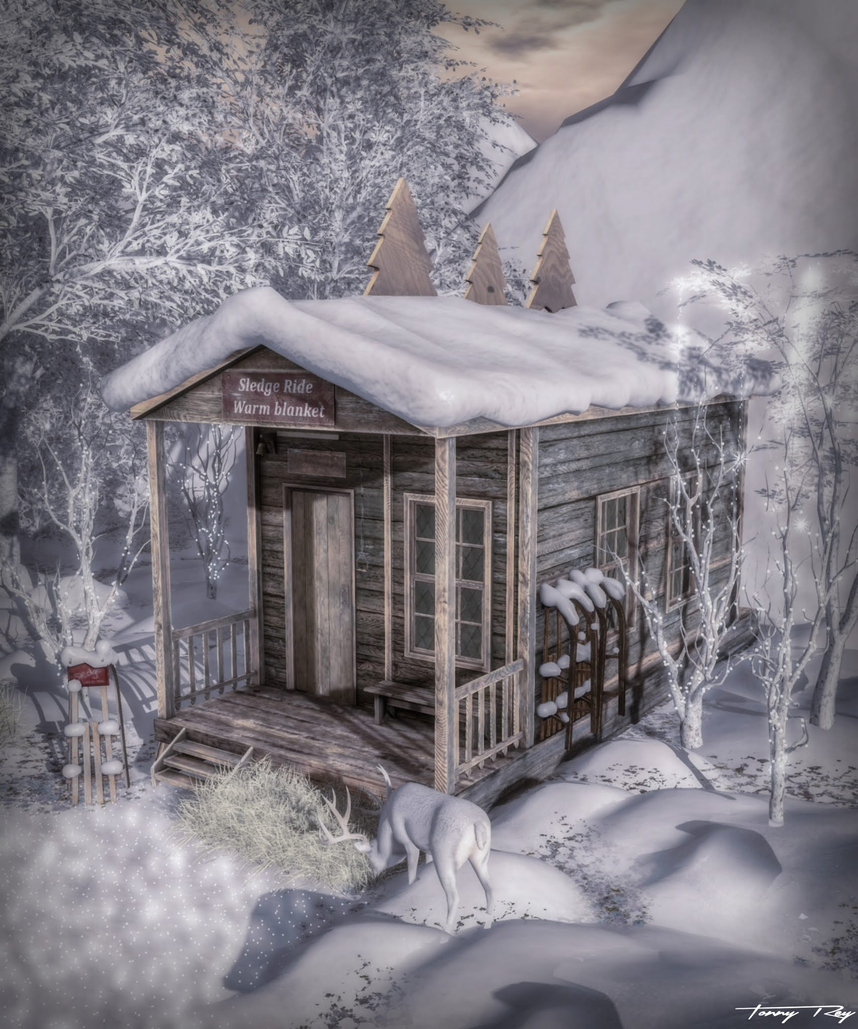 NTD – The Ole Shelter…