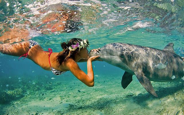 Vrouw zwemt met dolfijn