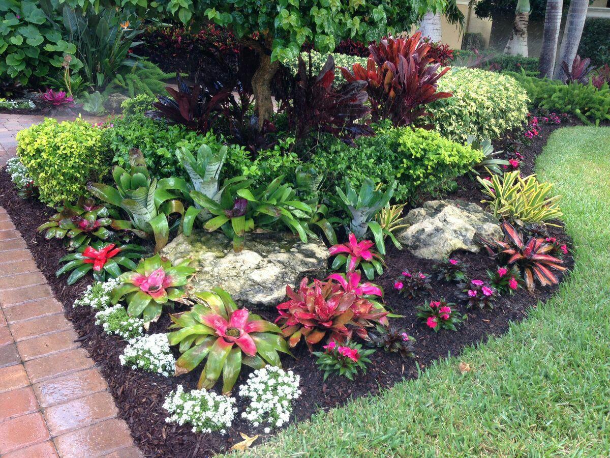 50 Indoor And Outdoor Succulent Plants And Garden Ideas