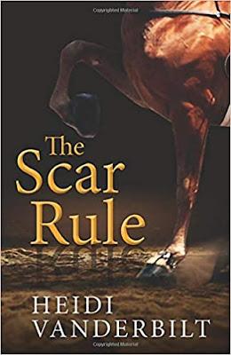 The Scar Rule by Heidi Vanderbilt