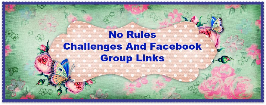 No Rules Challenges and Facebook Group links