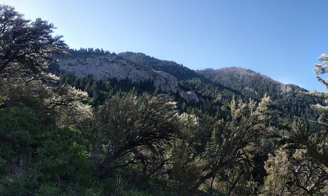 View of Mountains on Dry Creek Trail to Horsetail Falls Alpine Utah Lone Peak Wilderness