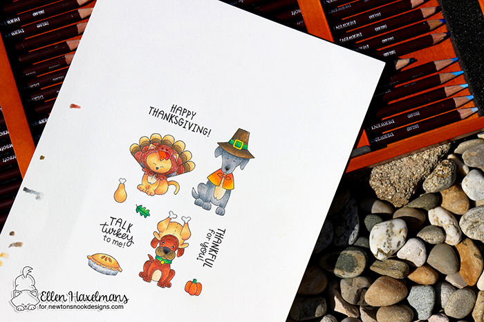 #newtonsnook #newtonsnookdesigns #handmadecard #cardmaking #stamping #fallcard #nnd #card #cardmaking #handmade #stampset #dieset #paperart #hobby #drawing #dutchcardmaker #derwentcoloursoft #derwentfallcoloring #simonsaysstamp #stamptember #talkturkeystampset #colorpencil