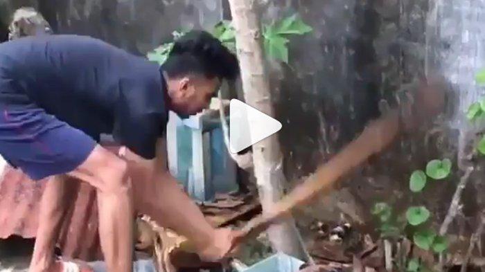 4 Pemuda di Bali Siksa Anjing Hingga Mati untuk Disantap