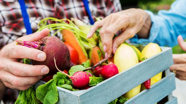 Organic Food Store – How To Choose The Right One