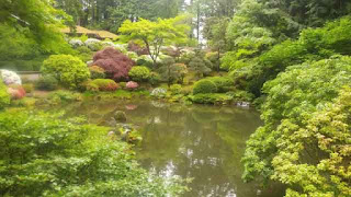 Portland Japanese Garden scene across a water feature