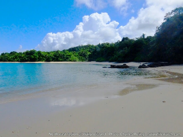 Beautiful Nature of Waigeo island