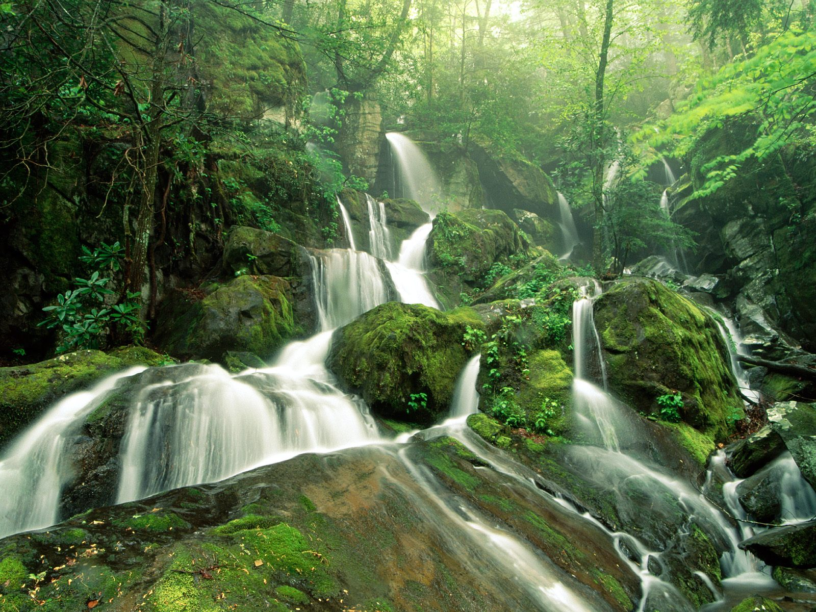 most beautiful nature pictures |Wallpaper Express is all ...