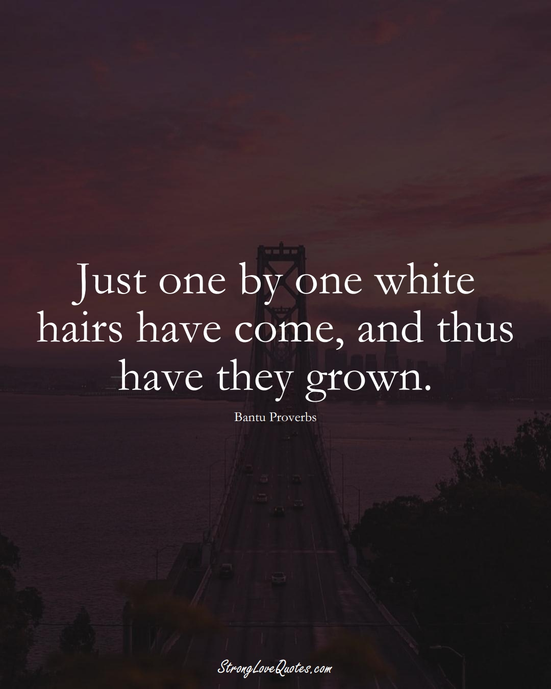 Just one by one white hairs have come, and thus have they grown. (Bantu Sayings);  #aVarietyofCulturesSayings