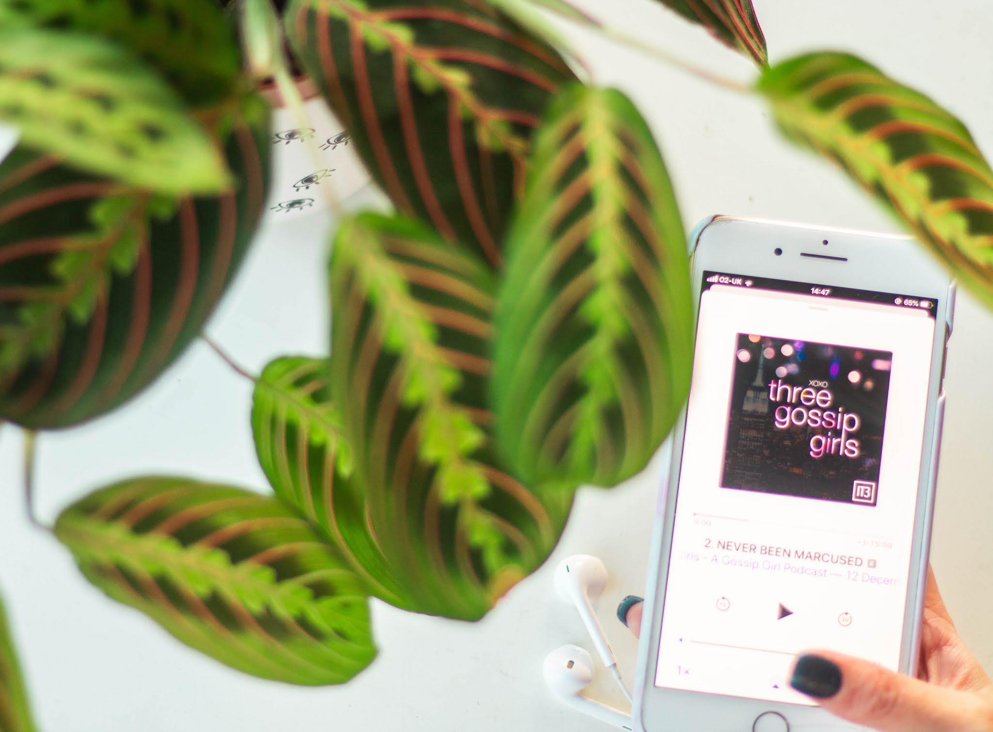 iphone showing top 2019 podcast - three gossip girls - with plant - self care - intentional living
