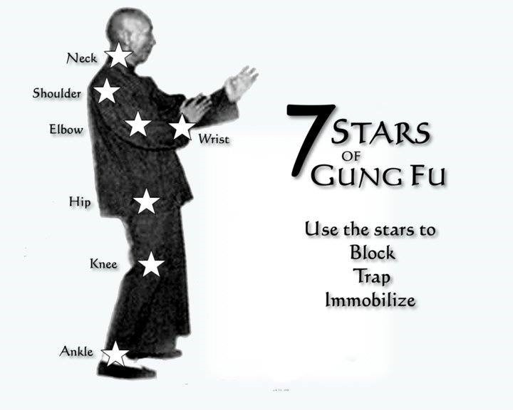 Yip Man 7 Stars of Gung Fu