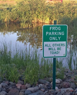 Frog parking only? Sign board that is downright hilarious
