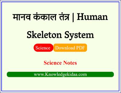 मानव कंकाल तंत्र | Human Skeleton System | PDF Download | Hindi |