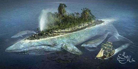 Ikan yang Menelan Nabi Yunus Masih Hidup Hingga Sekarang?