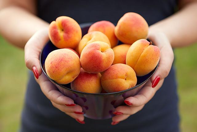 Abricots-pendant-la grossesse-valeur-nutritive-et-bienfaits-pour-la-sante