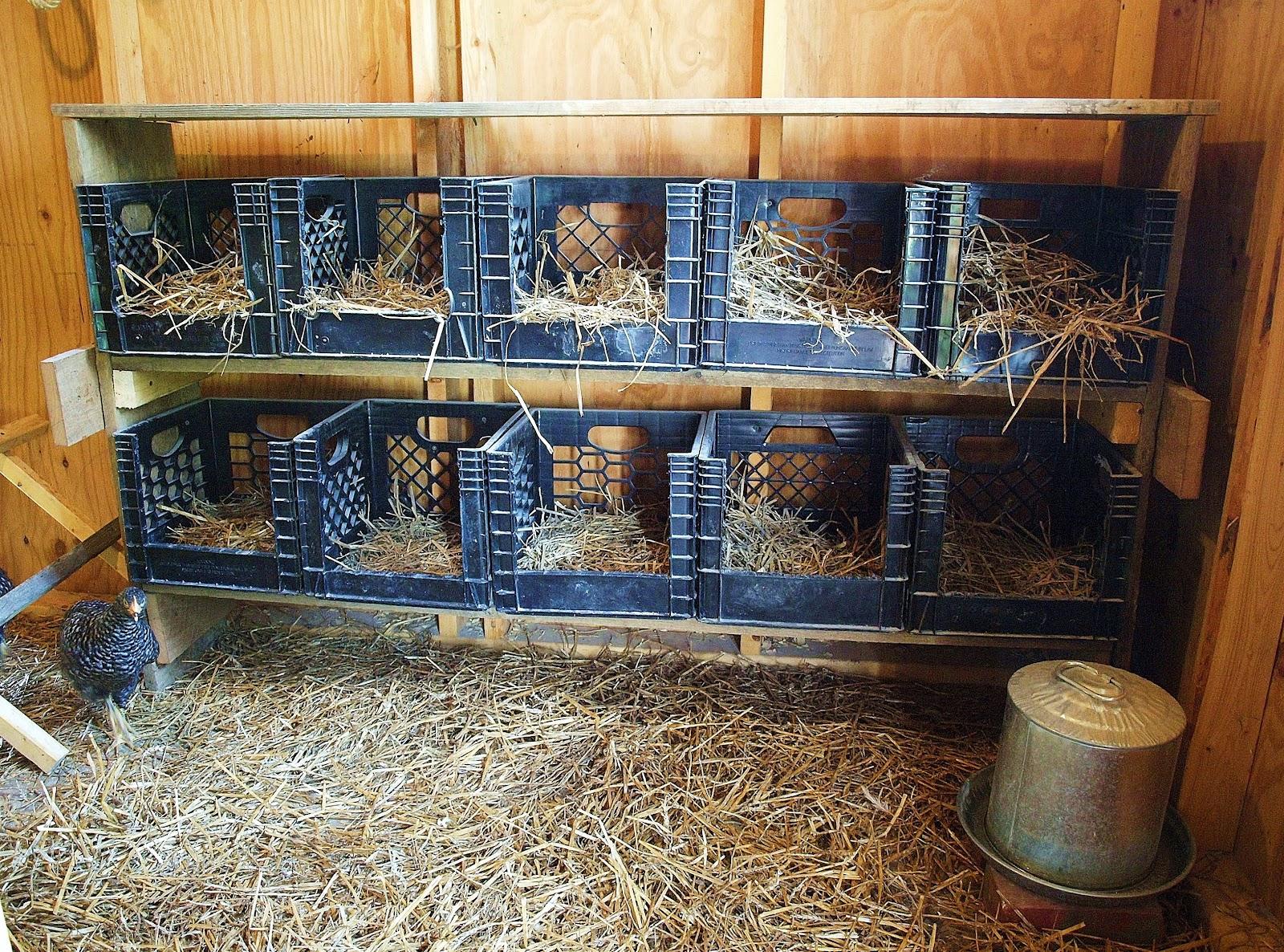 Decorating With Plastic Milk Crates