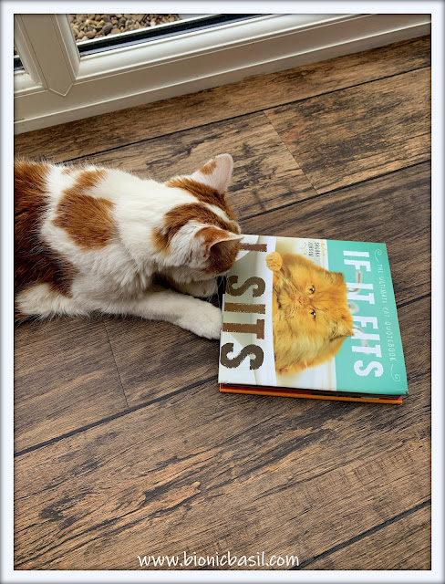 Amber's Book Reviews #139 ©BionicBasil® If It Fits, I Sits The Ultimate Cat Quote Book