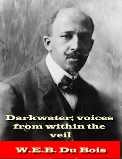 Darkwater; voices from within the veil (1921)