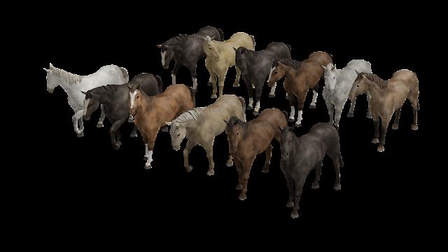 3D model horses