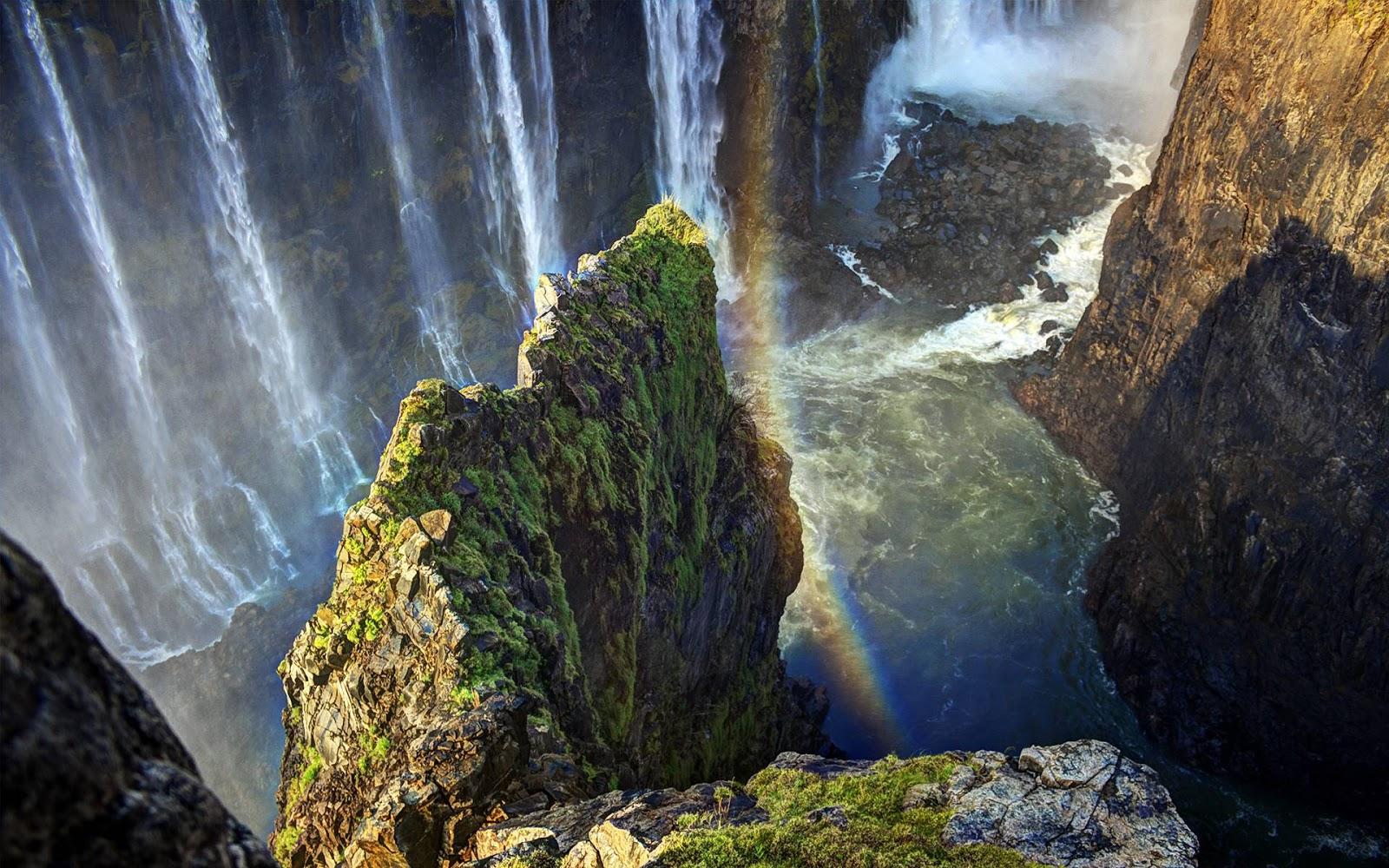 Amazon Rainforest Wallpapers