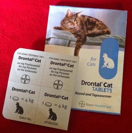 Review Obat Cacing Drontal Cat Tablets Radiokucing Com