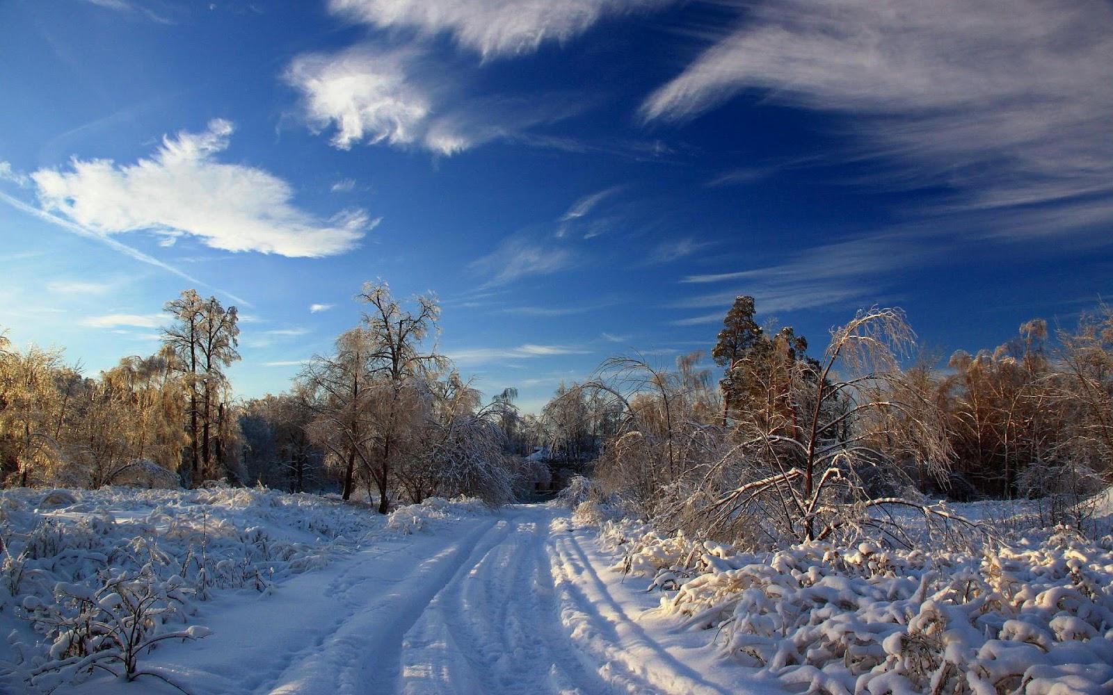s1600 winter achtergronden winter - photo #15