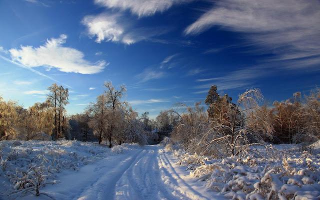 Winterlandschap met een besneeuwde weg