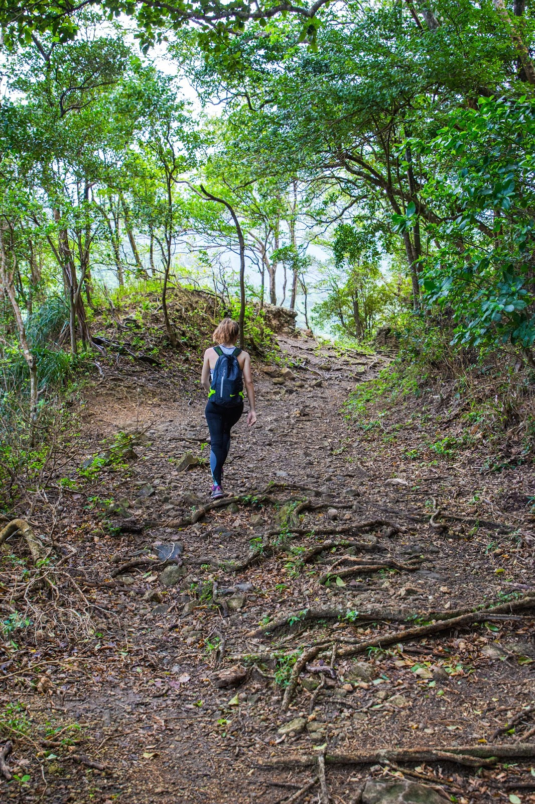 Randonnée Martinique
