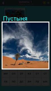 в пустыне стоит одинокое дерево и кучевые облака на небе