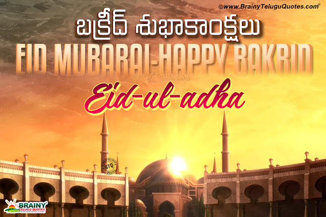 happy bakrid wallpapers quotes in Telugu-trending bakrid images pictures in telugu free download