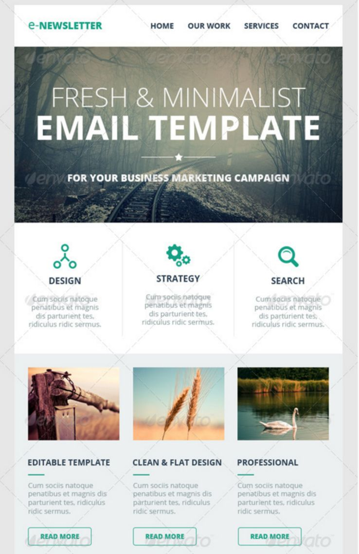 50+ Email Newsletter Templates PSD - Free & Premium Downloads ...