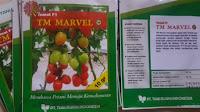 tomat tm marvel, jual benih tomat murah, benih berkualitas, budidaya tomat, toko pertanian, toko online, lmga agro