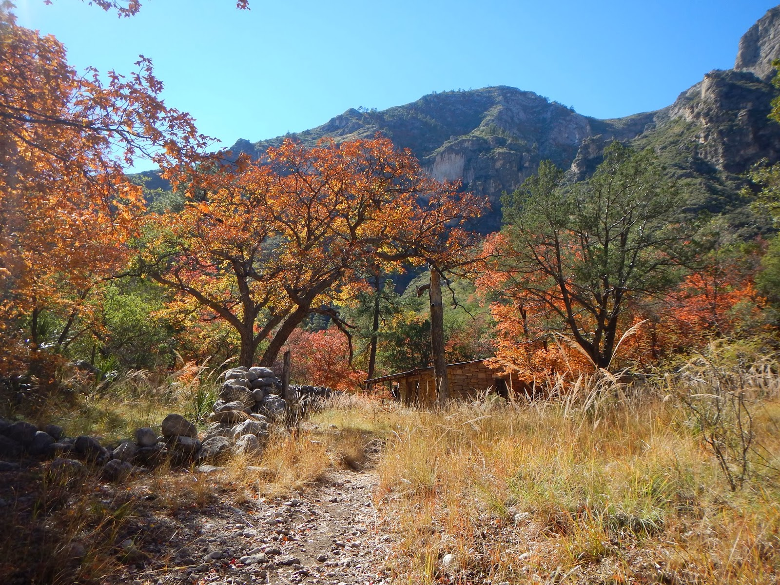 High Rises To Hiking Boots Mckittrick Canyon In Fall