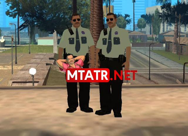 Polis Memuru