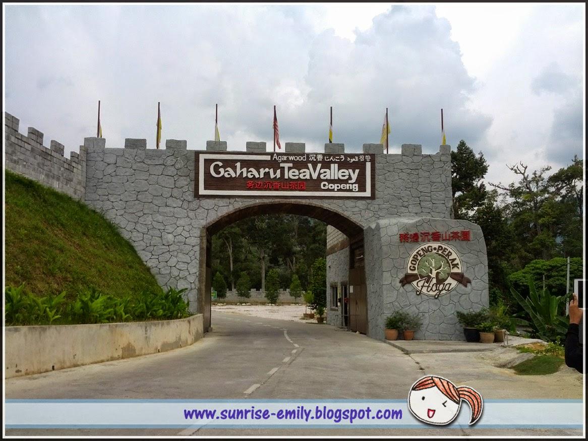 Gaharu Tea Valley Gopeng, Perak