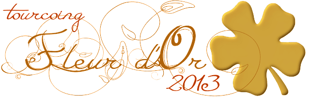 Tourcoing Fleur d'Or 2013 Ville fleurie